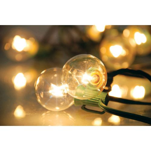 Living Accents  白熱灯グローブライトセット クリアー (642GV111) / GLOBE LIGHTS 20CT CLR